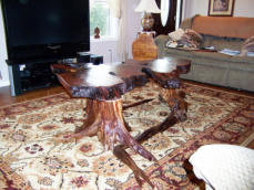 Rustic coffee table from unique piece of wood slab and wood burl.